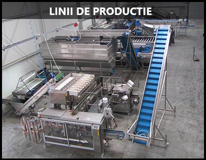 Linii de productie 1